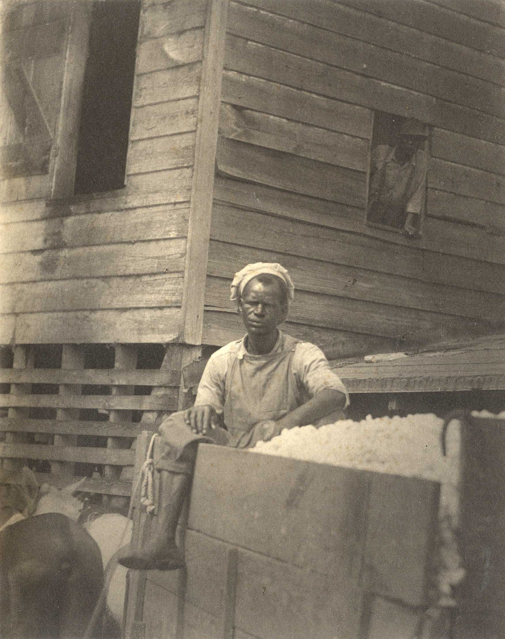 Two African-American men and cotton wagon, South Carolina, 1929-30